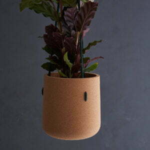 Atlas Hanging Planter Forest cord