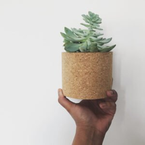 Echo Cork Planter