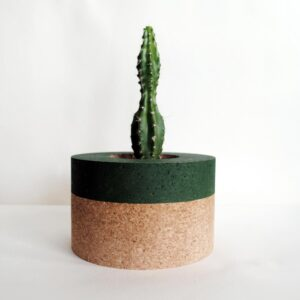 Helki Fern Cork Planter