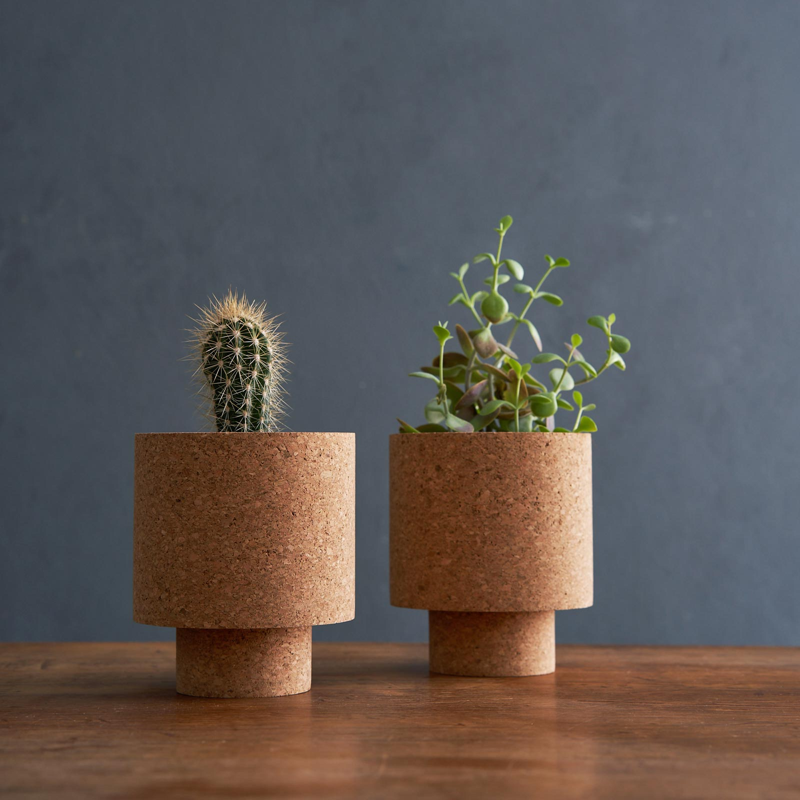 isla natural cork planter from mind the cork